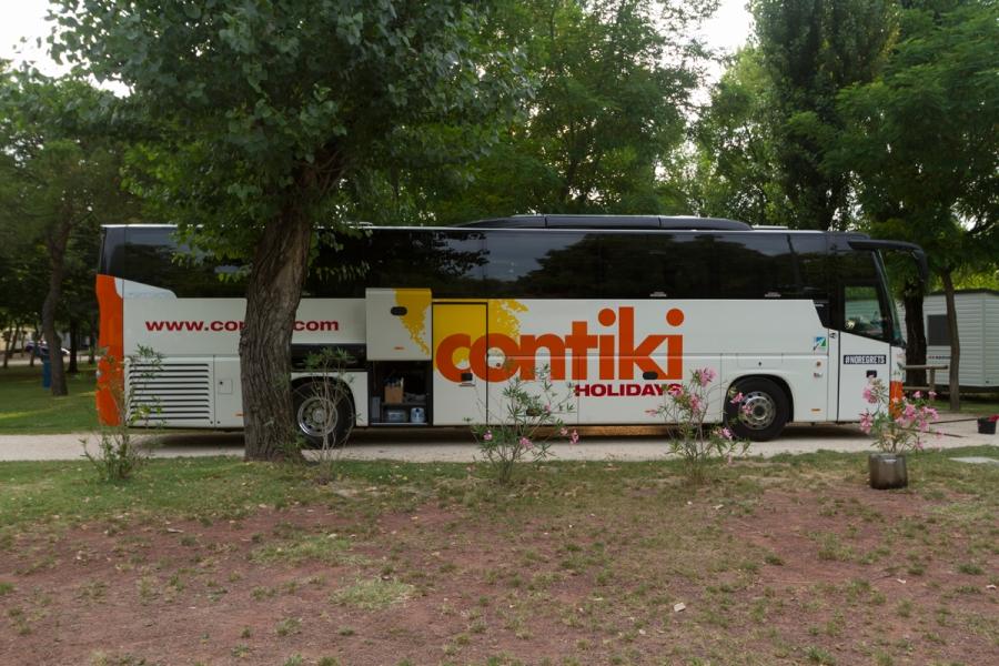 Contiki Family